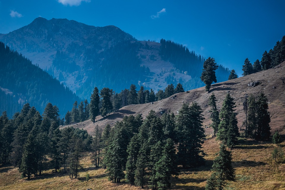 Pahalgam - Romantic Hill Stations in India Book tour with TripDezire