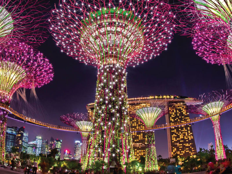 Enjoy Gardens by the Bay on Singapore Tour with TripDezire