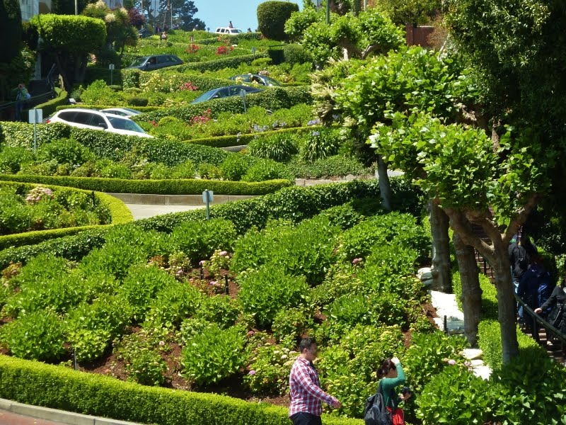 lombard street california tour with TripDezire