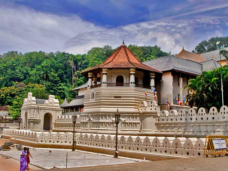 Sri Lanka Holiday Packages - Book with TripDezire at 999 111 9350
