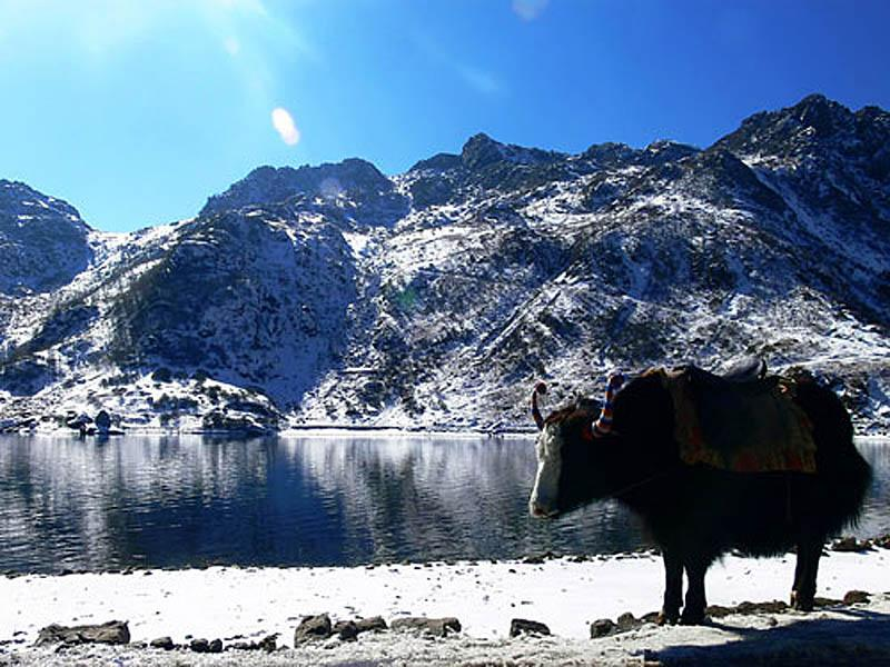 Darjeeling-Gangtok Holiday Package with TripDezire for booking call at 999 111 9350